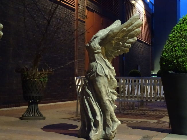 Nightphotography The Purist (no Edit, No Filter) Angle Statue Cities At Night