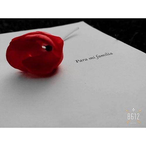 Aceptamos el amor que creemos merecer.... Instaphoto Book Flowers Dedicatoria LAS VENTAJAS DE SER INVISIBLE