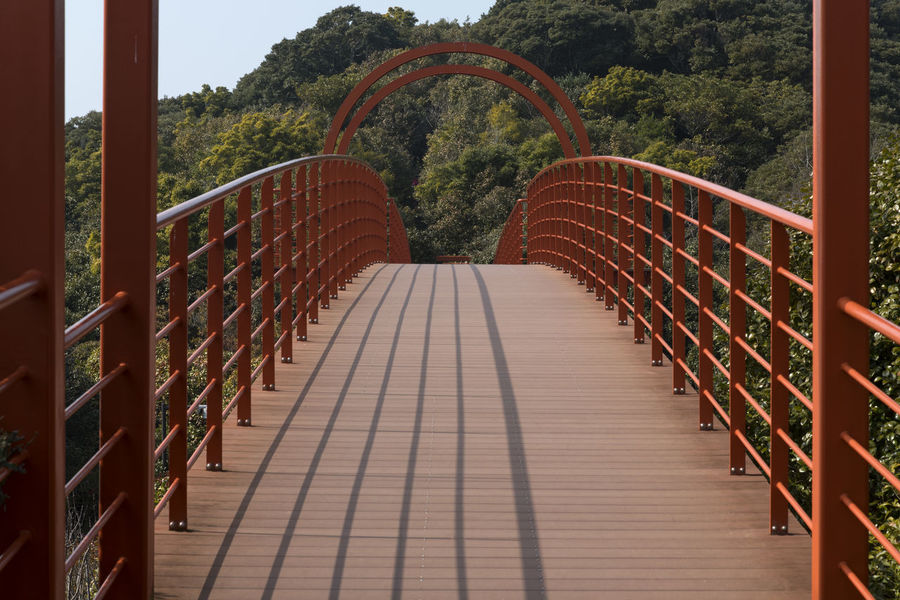on the bridge at Jangsado Island in Tongyeong, Gyeongnam, South Korea Architecture Nikon D850 South Korea Tongyeong Arch Architecture Bridge Bridge - Man Made Structure Built Structure Connection D850 Day Diminishing Perspective Direction Empty Footbridge Footpath Jangsado Metal Nature No People Outdoor Photography Outdoors Plant Railing The Way Forward Tree