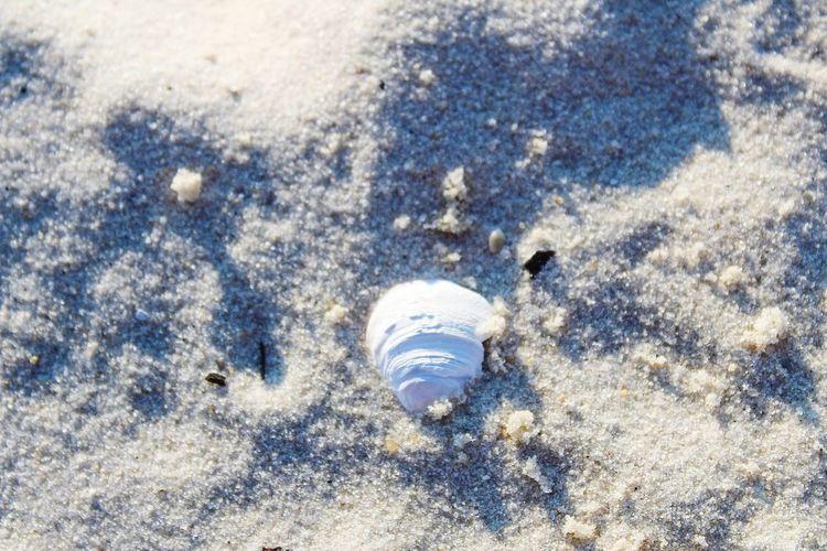 Sand Beach High