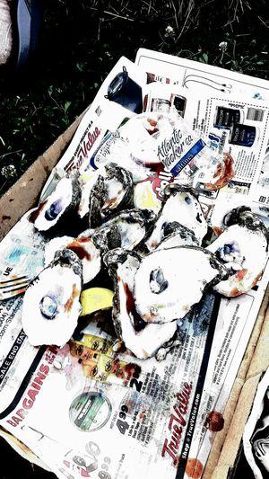 Abundance Eat Em Ra New Orleans Oyste Oyster Shells Oyster Shells Oysters Oysters With All The Fixins Raw Oysters Raw Oysters And Clams Shell Southern Eating White Color