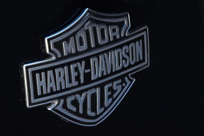 Legendary Motor Harley-Davidson cycles logo Classic Famous Harley Harley Davidson Harley-Davidson Legendary Logo Logo Design Motor Bike Black Background Brand Close-up Cycles Harleydavidson Original Speed Text