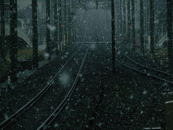 転院の日 東京に降る雪 A Day Of Tokyo Tokyo,Japan Snow No Standard World Transportation Rail Transportation Outdoors Shades Of Winter Cold Temperature Winter Nature The Street Photographer - 2018 EyeEm Awards