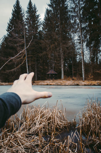 Close-up of woman hand by lake against trees