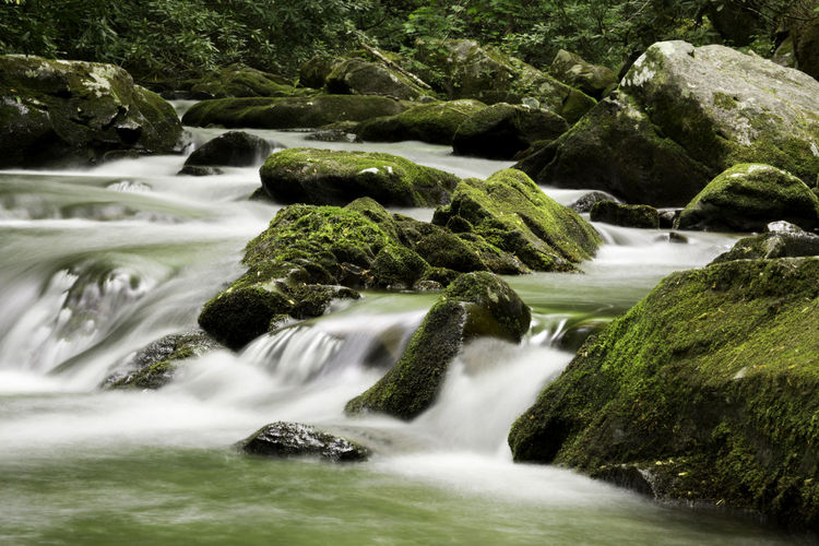 Beauty In Nature Blurred Motion Flowing Flowing Water Land Long Exposure Moss Motion Nature No People Outdoors Plant Purity Rainforest River Rock Rock - Object Running Water Scenics - Nature Slow Shutter Solid Stream - Flowing Water Tree Water Waterfall