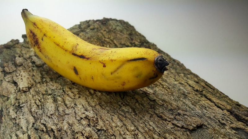 Banana, Pisang, Musa, Banana Banana On Skin Tree Banana Fruit Backgrounds Cover Photo Cover Art Photographer Rear View Fruit Photography Fresh Fruits Fresh On Eyeem  Fresh on Market 2017 Fresh On Eyeem  Fresh Food Market Fresh Fruit On White Background Musa Pisang Berangan Pisang