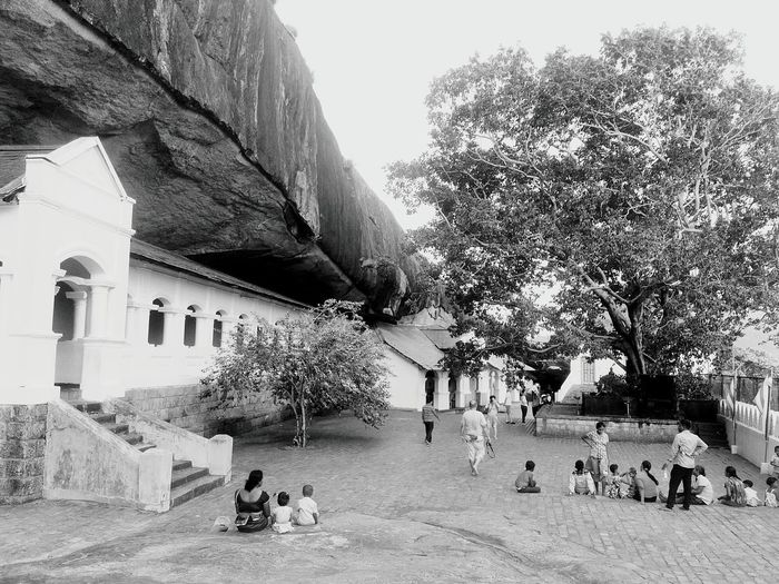 Dambulla Temple Sri Lanka Asian  ASIA Ceylon Exotic Heritage Exoticism Buddhist Temple Buddhism Asian Culture Landmark Monument Rock Travel Destinations Travel Traveling Golden Cave Religion Unesco UNESCO World Heritage Site Monastery Art Religious Architecture Tree Architecture Built Structure Building Exterior Civilization Arch