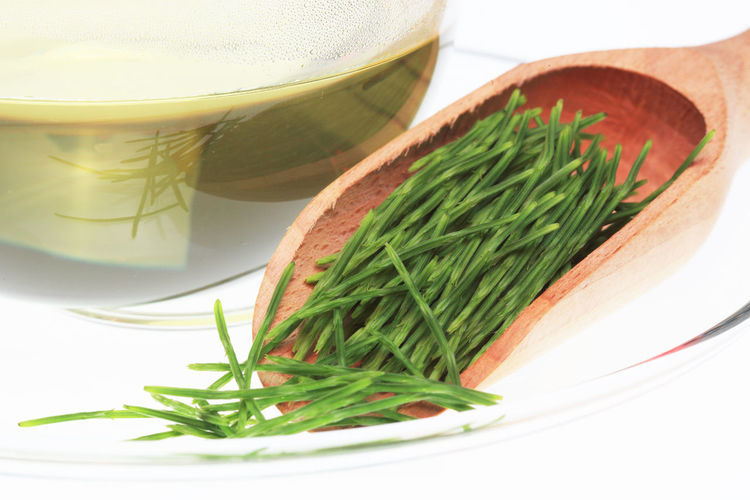 medicinal tea made of common horsetail, Equisetum arvense, field horsetail Equisetum Arvense Herb Horsetail Tea Close-up Common Horsetail Drink Drinking Glass Food Food And Drink Freshness Glass Green Color Healthy Eating Herb Herbtea Household Equipment Indoors  Leaf Medicinal Plant Medicinal Tea Nature No People Plant Part Refreshment Still Life Table Wellbeing