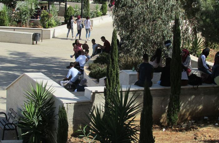 Tree Full Length Outdoors University Canon Powershot