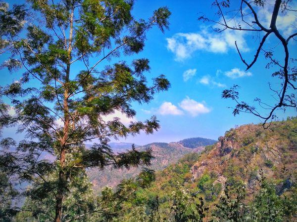 Tree Nature Sky Mountain Beauty In Nature Cloud - Sky Scenics