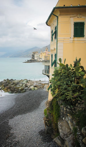 Water Building Exterior Built Structure Architecture Sea Nature Sky Day No People Beauty In Nature Cloud - Sky Building Beach Outdoors Riviera Waves Italian Riviera Landscape Seaside Mediterranean Sea Plant Growth Rock Solid Rock - Object Cactus Colored Buildings