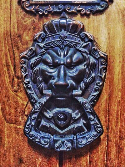 Hanging Out Taking Photos Hello World Enjoying Life Check This Out Still Life Backgrounds EyeEm Gallery Bangladesh Check This Out Abstractart Abstract Moment Of Life Bangladesh, Dhaka Lion Doorbells Doors Lion King  King