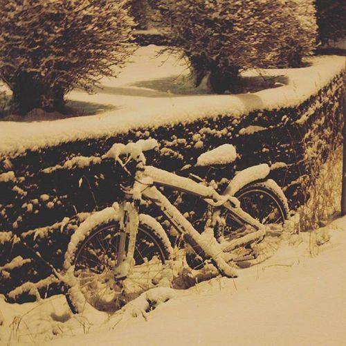 Estaba deseando que llegara la nieve Invierno Cucada Pareceunapostal Vinter Nieve Snøibodø Snow Winter Norway Norge Rasquita