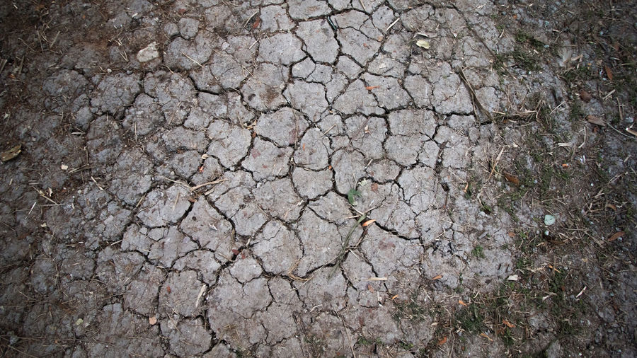 ลายพื้นดินที่บังเอนไปเห็นเลยถ่ายมาเก็บไว้ Cracked Cracked Earth Earth Striped Ground Stripedpajamas Surface Texture Textures And Surfaces