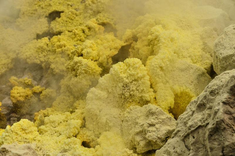 Close-up of yellow sulphur