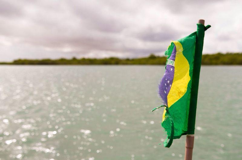 Brazil Brazilian Brazilian Flag Ragged Flag Flag Selective Focus Blurry Background