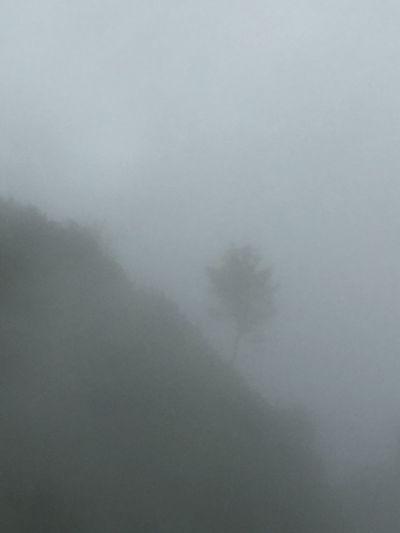 "... ""La nebbia agli irti colli piovigginando sale..."" Gallerie Pasubio 🌏my Life⛩ 🤠my Holidays😎 EyeEm Best Shots"