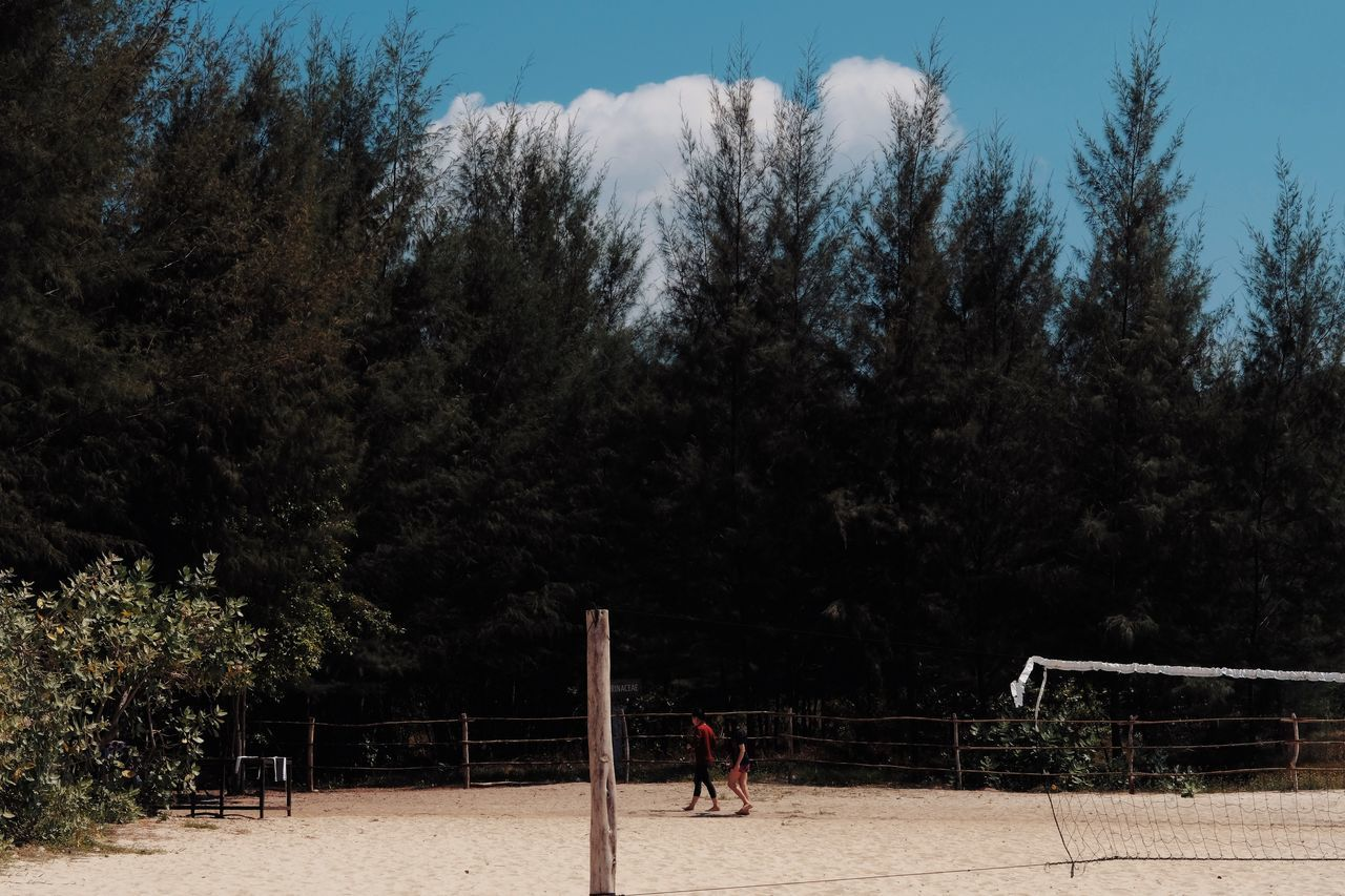 PEOPLE PLAYING SOCCER ON FIELD AGAINST TREES