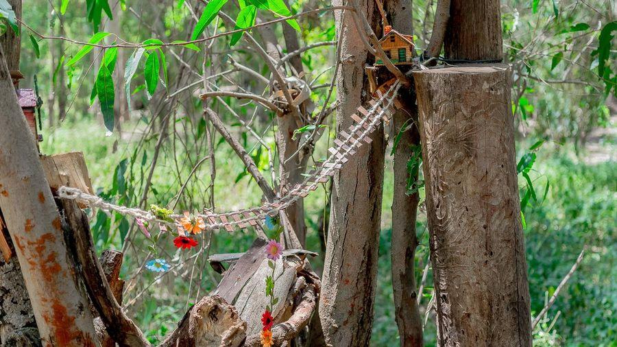 Toy Bridge Hanging Amidst Tree Trunks