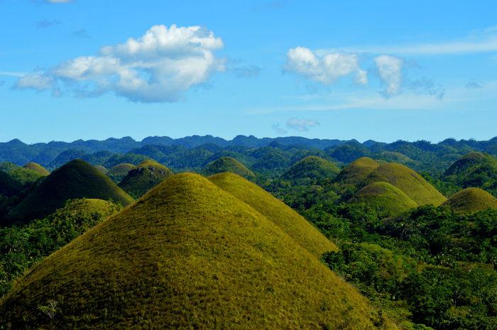 Hills Chocolatehills Bohol Philippines Travel Nature