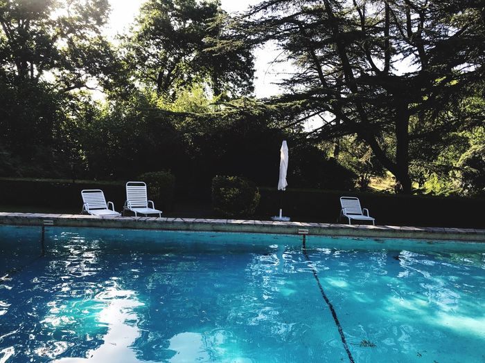 Summer Swimming Pool Water Tree Day Vacations Tranquility Swimming Outdoors No People Nature Oldpool