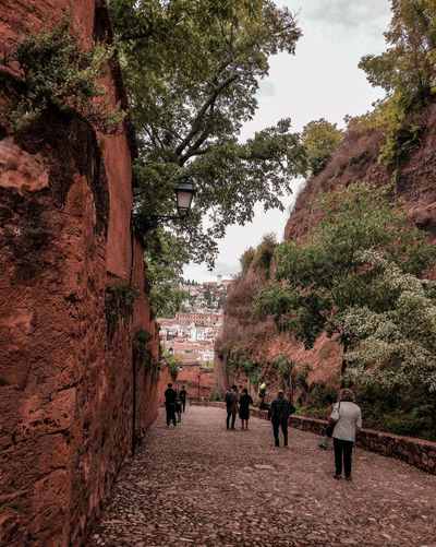 an artificial canyon Tourists Old Town Granada Granada, Spain Canyon Valley Ravine People Walking  Tree Men Women Sky Building Visiting Exterior Tall - High Architecture Pathway Historic Walkway Street Scene Branch Passageway Building Exterior