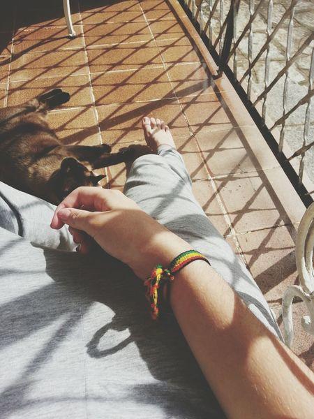 Goodmorning Relaxing Cat Reggae