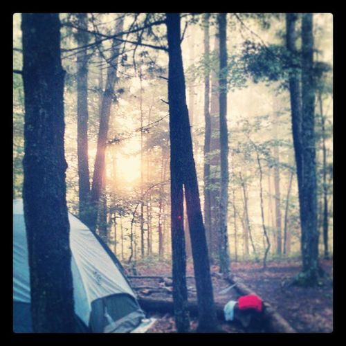 Good morning. Camping Redrivergorge