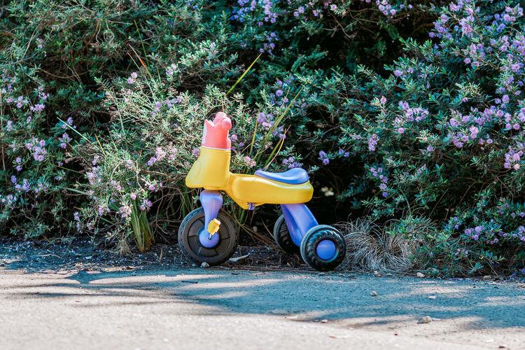 Toy car on playground