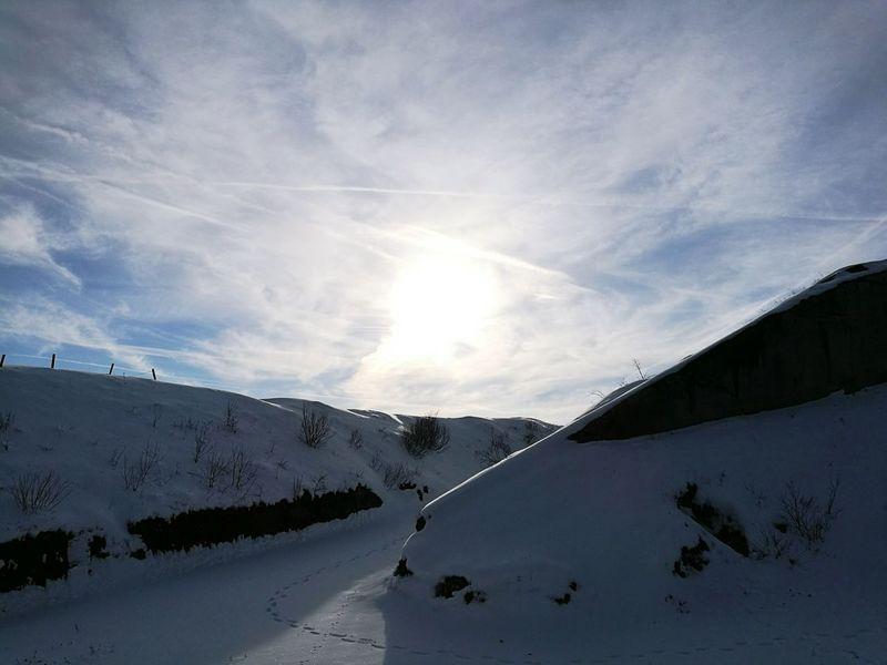 Forte Cherle Nature Outdoor Snow Trees Trentino  Italian Alps Italy History Ww1 Folgaria