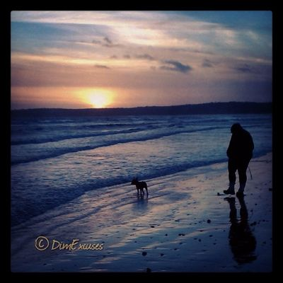 Swansea Bay Winter Sunset. AdventuresOfMolly Frenchbulldog