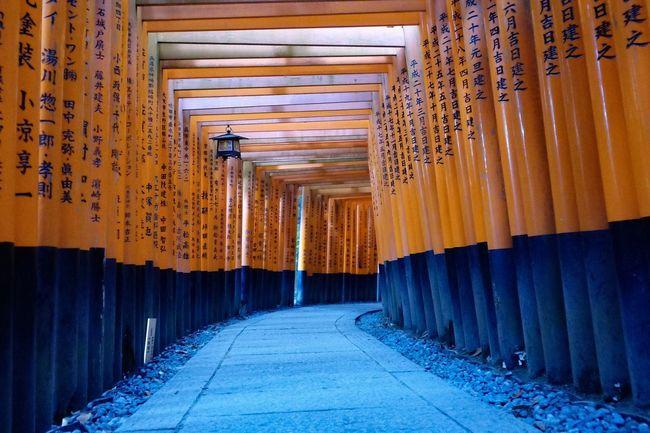 Inari Shrine Kyoto Fushimi Inari Kyoto First Eyeem Photo DxO One No People