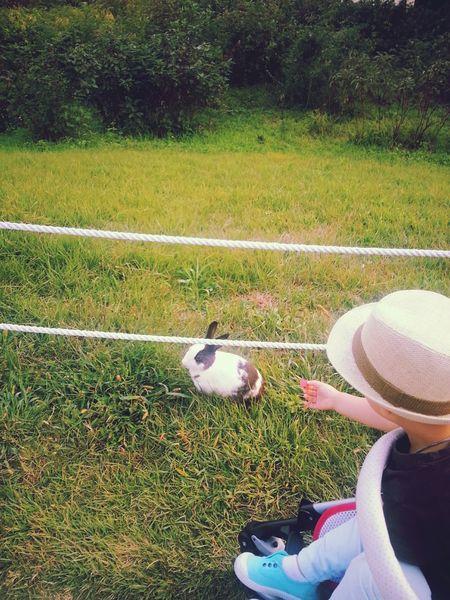 올림픽공원 토끼 잔디 아가 아가가 젤리를 토끼에게 주며 여기로 오라고 유혹중