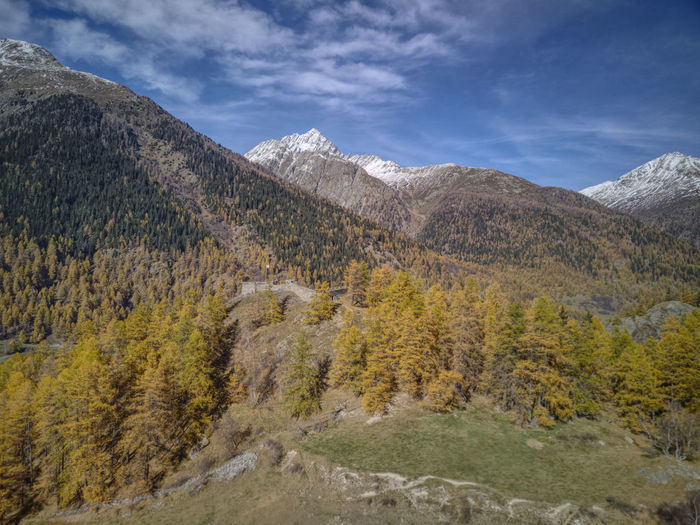Autumn Drone  Aerial Photography Dronephotography Fortezza Mountain Nature No People Outdoors Scenics Tree