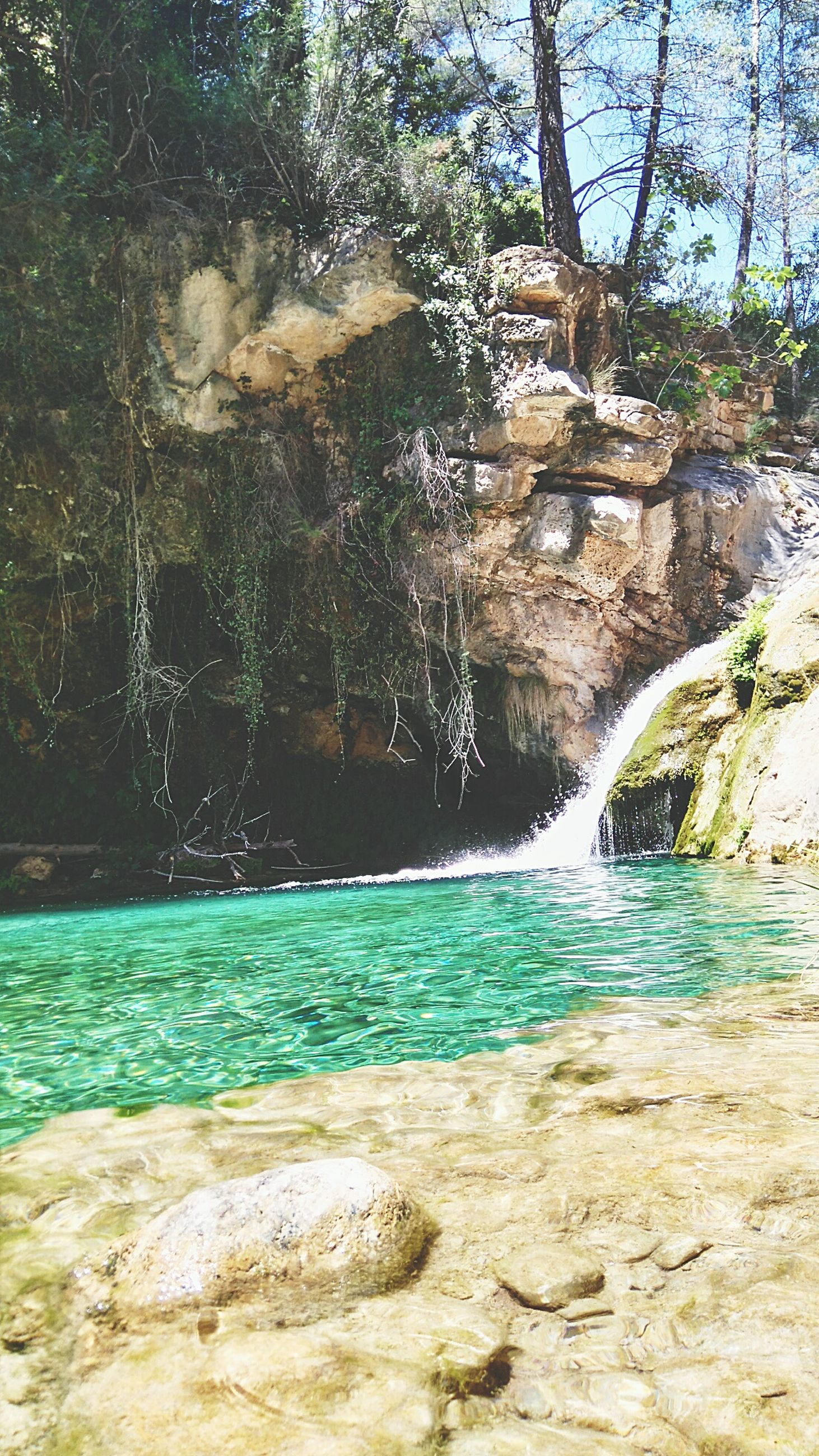 water, tree, motion, rock - object, beauty in nature, waterfall, nature, blue, rock formation, flowing water, scenics, sea, splashing, day, tranquility, sunlight, surf, tranquil scene, outdoors, turquoise colored