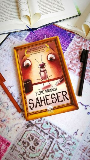 Kitap Saheser Bookstagram Ilkadım Ilkfoto