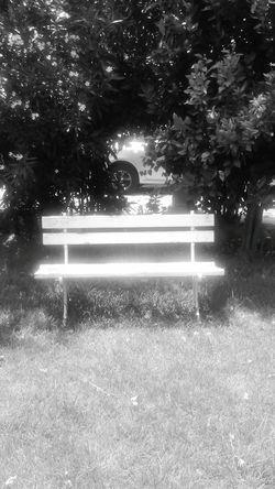 Black And White Scenery Shadows & Lights Monocromado Taking Photos Effects Hi! Eyemphotography EyeEm Gallery Freestyle Monochrome Monochromatic Chair Art Chair In Garden Garden Photography