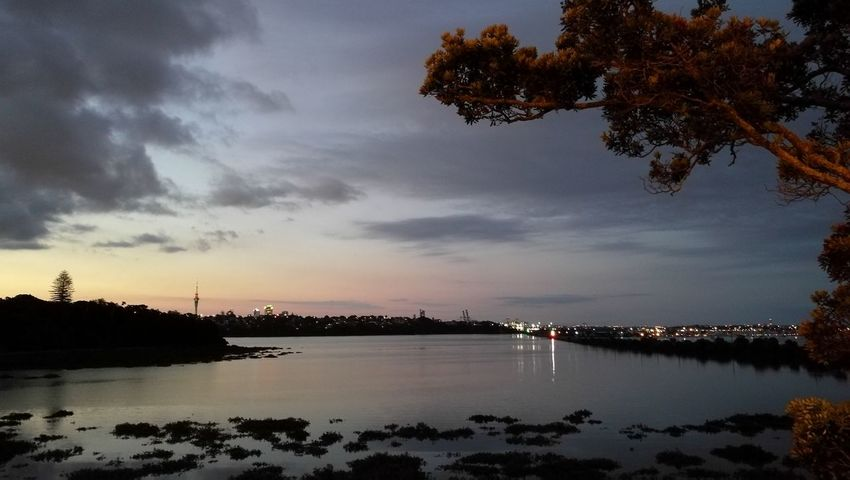Tree Reflection Water Sunset Tranquility Cloud - Sky No People Sky Night Outdoors Vacations Sea Beauty In Nature Nature City Tranquility Summer Sunsets Sunset_collection Peaceful View Auckland