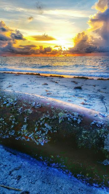 43 Golden Moments. Taking Photos Sea Art Check This Out By The Seaside Sea_collection Memoriesmade Sunrise sunrise_collection