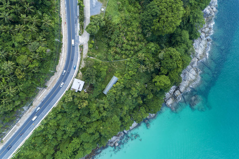 Water Plant Tree High Angle View Nature Green Color Day Growth Aerial View Scenics - Nature Beauty In Nature No People Land Sea Outdoors Tranquil Scene Tranquility Road Transportation Turquoise Colored Swimming Pool