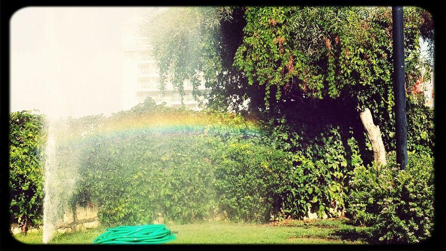 Street Photography Light And Shadow Rainbow(: Water Colors yerden cikan suyun kenarinda olusan kucucuk dogal guzelligi ile gökkuşağı misafirleri agirlar :)