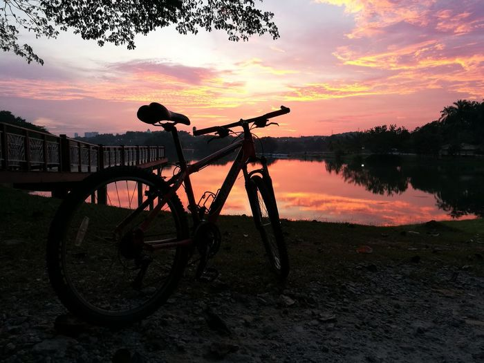 Bicycle Lake Sunset Reflection Water Silhouette Tree Cloud - Sky Tranquility No People Nature Outdoors Scenics Sky Landscape Tree Area Beauty In Nature Day Close-up