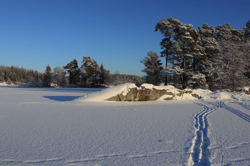 Snow covered land and trees against clear blue sky