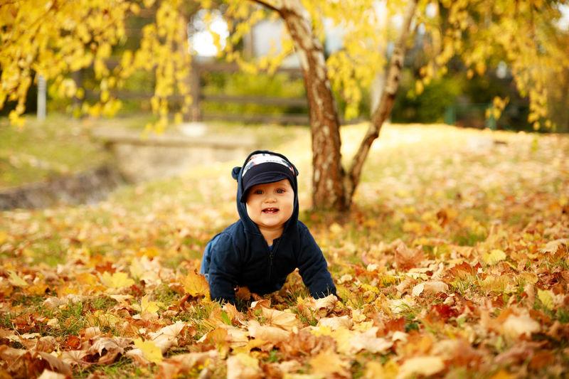 Portrait of cute boy crawling on autumn leaves