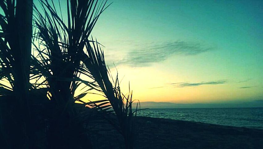 Sea View Sea_collection Eyem Best Shots Nature_collection Sunset Sea And Sky Htcone Beach