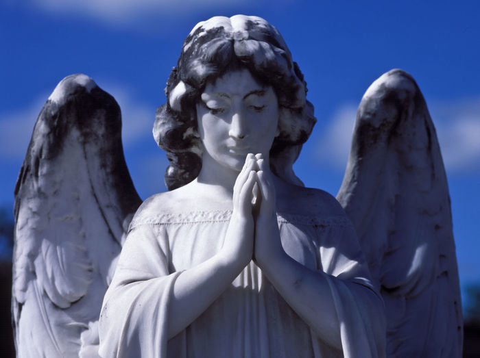 praying Angel in the blue sky Angel Art And Craft Blue Sky Cementery Clouds Craft Day Female Likeness Half Portrait Hands Together Horizontal Human Representation Looking Down From Above Marble No People Outdoors Praying Sculpture Sky Spirituality Statue Weathered Stone Wings Woman