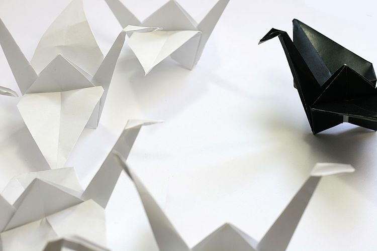 Origami cranes Business Cranes Leader Speech Teaching Black And White Blackandwhite Boss Chef Close-up Crane Day Gegenüber Group Holding An Address Leadership No People Opposite Origami Paper Paper Art Studio Shot Teacher Vis-a-vis White Background