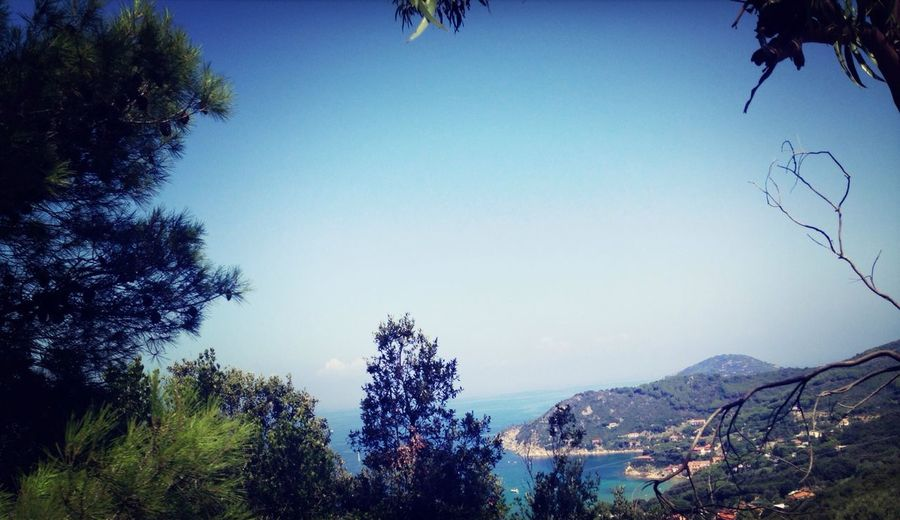 Elba Biodola Sea