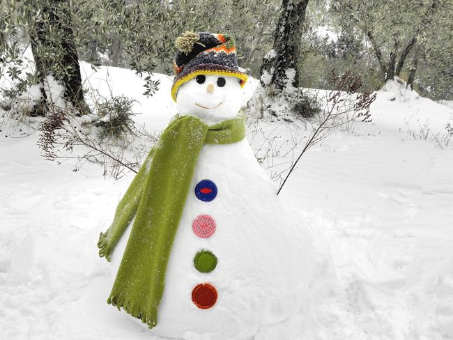 Winter Snow Cold Temperature Snowman White Color Nature No People Childhood Outdoors Tree Day Beauty In Nature Smiling Olive Tree Multi Colored Wool Hat Hat Scarf Green Scarf Open Arms Bottons EyeEmNewHere Done That. Fashion Stories Shades Of Winter 50 Ways Of Seeing: Gratitude Holiday Moments