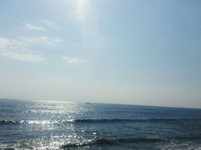Sea Japan Minamichita Maruha Results Autume